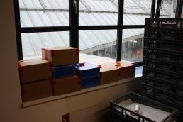 fertig-gepackte-pakete-bereit-zur-abholung